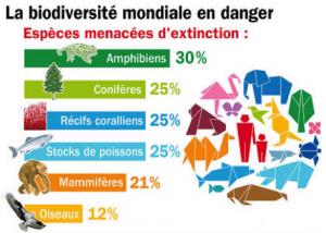 Biodiversité mondiale en danger